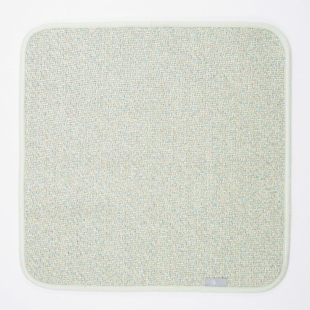 HOLA 艾爾亞藤抗菌防螨一人坐墊 50x50cm 綠