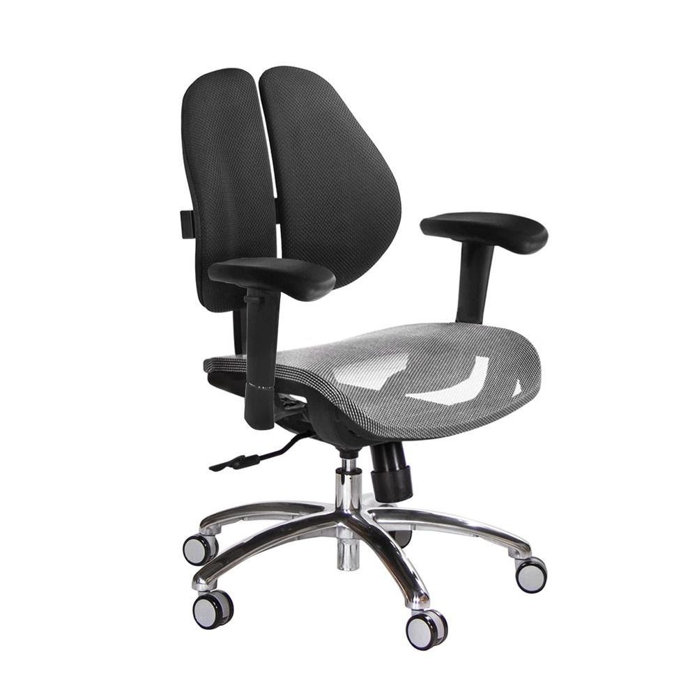 GXG 低雙背網座 電腦椅(鋁腳/升降滑面扶手)TW-2803 LU6訂購後備註顏色