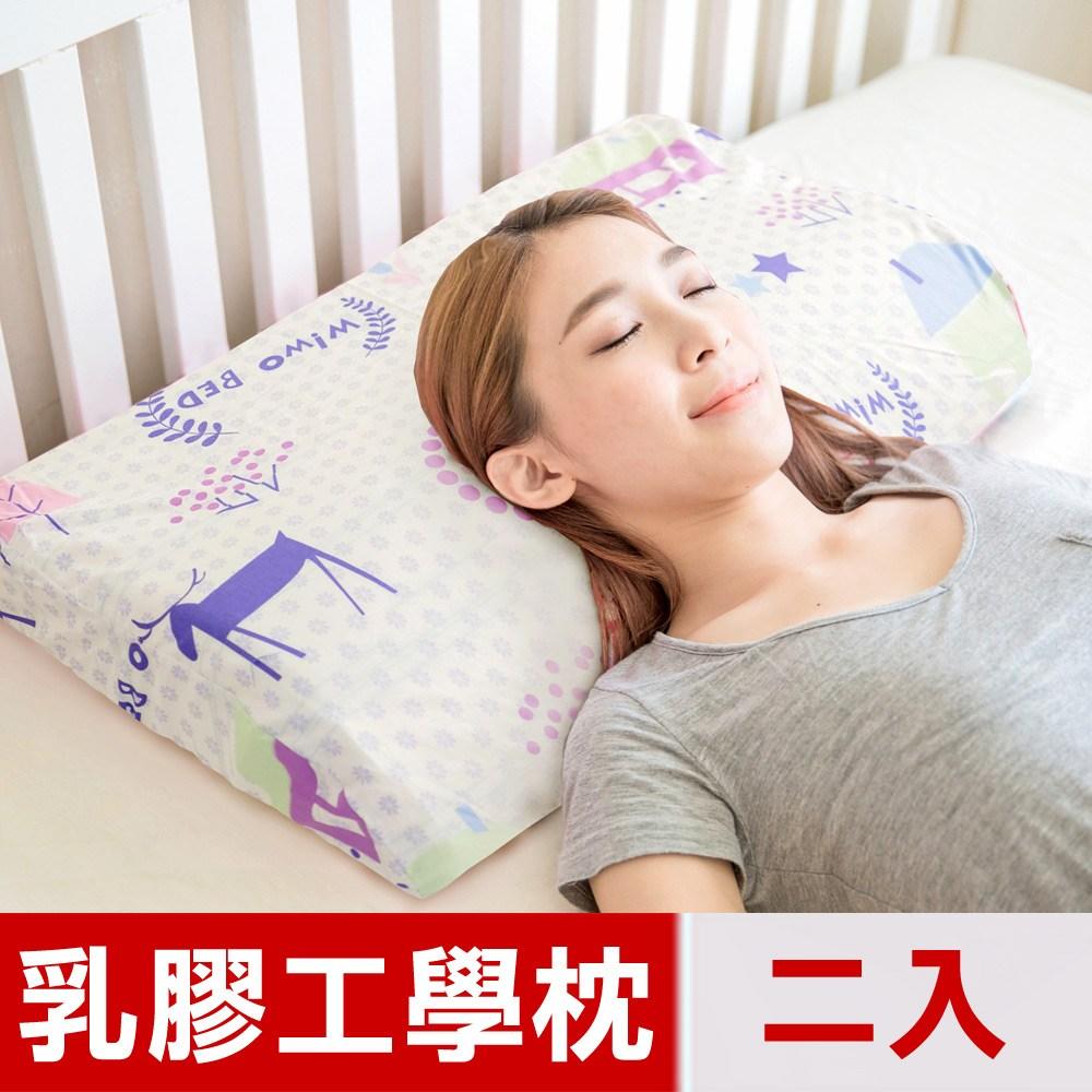 【米夢家居】夢想家園系列-成人用-馬來西亞天然乳膠工學枕(白日夢)二入