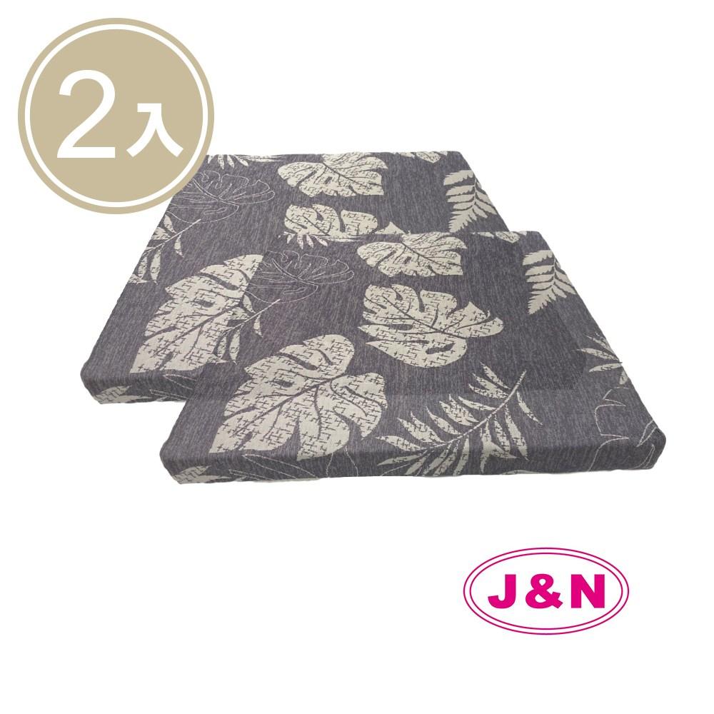 【J&N】紫葉涼感立體坐墊 - 55x55x5cm(2入/1組)紫色