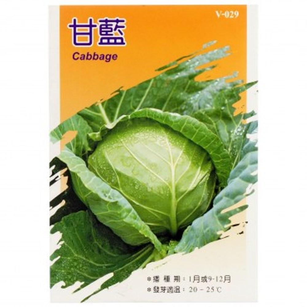 蔬菜種子-甘藍