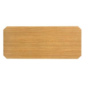 特力屋 木紋墊片 103x43cm MDF 106X45公分鐵網適用