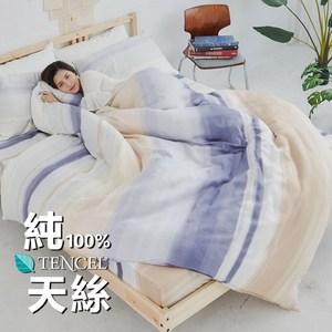 【BUHO】100%TENCEL純天絲舖棉兩用被床包組-雙人加大(日暮霞韻)