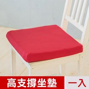 【凱蕾絲帝】台灣製造-久坐專用二合一高支撐記憶聚合紓壓坐墊-棗紅一入