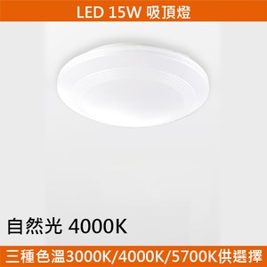 HONEY COMB LED 15W簡約吸頂燈 自然光 T04834