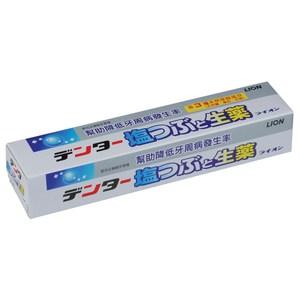 日本獅王草本鹽粒牙膏180gX6