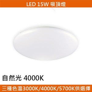 HONEY COMB LED 15W經典吸頂燈 自然光 T04714