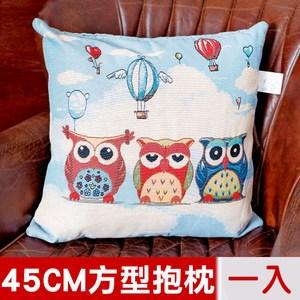 【凱蕾絲帝】居家沙發車用-緹花方形抱枕靠枕45CM(熱氣球貓頭鷹)一入