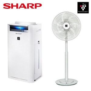 夏普空氣清淨機KC-JH60T-W加16吋DC電扇PJ-H16PGA