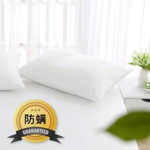 MONTAGUT-防蹣防水透氣枕頭套(2入)