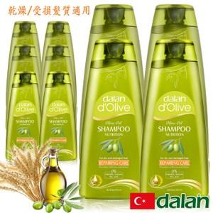 【土耳其dalan】專業修護洗髮露限量回饋10件組(乾燥/受損髮質)