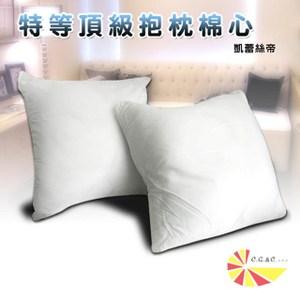 【凱蕾絲帝】特級可水洗棉-抱枕裸棉內材-48~50CM專用-二入