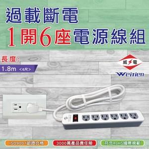 威電 過載斷電1開6座電源線組6呎(CK3165-6)