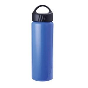 Dashiang 304不鏽鋼真水律漾瓶660ml-藍 DS-C18-660