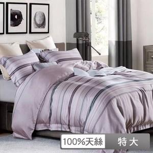 【貝兒居家寢飾生活館】頂級100%天絲鋪棉涼被床包組(雙人/布蘭妮)