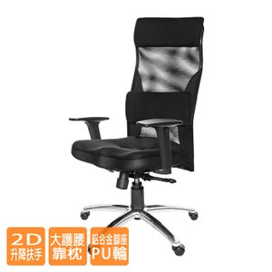GXG高背美臀電腦椅(鋁合金腳/2D扶手/大腰枕)TW-171LUA2#訂購備註顏色