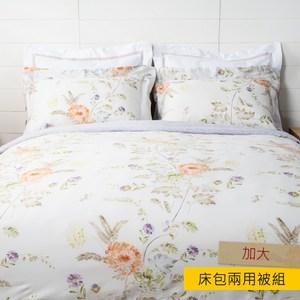 HOLA 青黎淺米天絲床包兩用被組 加大