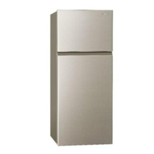 Panasonic 國際牌 232公升 NR-B239T-R 雙門冰箱
