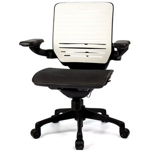 aaronation 愛倫國度 線控底盤人體工學椅 黑網尼龍腳黑網-尼龍腳
