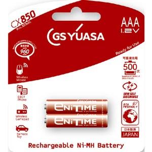 日本湯淺YUASA 低自放電鎳氫電池 4號 AAACX850(1組2顆)