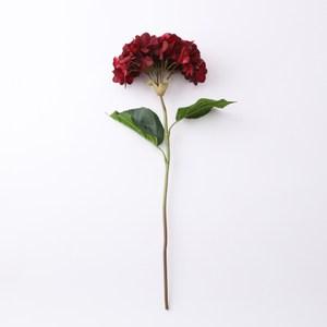 悅迎繡球花 深紅