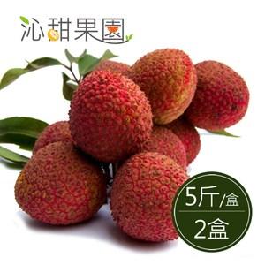 預購 沁甜果園SSN.高雄大樹玉荷包-粒果5斤裝/盒(共2盒)6/1-6/10出貨