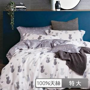 【貝兒居家寢飾生活館】100%萊賽爾天絲兩用被床包組仰星星/ 特大雙人