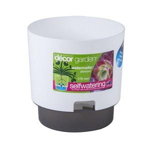decor WATERMATIC 馬可雙色圓型自動蓄水花槽21.5cm 白