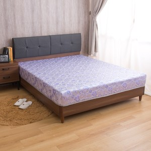【YFS】璐易絲透氣升級款-歐式緹花抗菌透氣強化紓壓雙人加大6尺彈簧床
