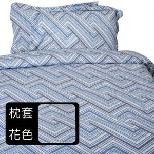 HOLA home 時空幻境歐式枕套2入