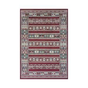 皇宮絲毯67x105cm 安地斯