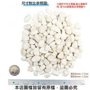 極白石 3分 20公斤±5%裝 (漢白玉.特白石.鵝卵石.白卵石)