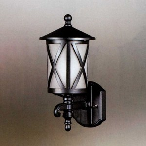 YPHOME 戶外壁燈 A16863L
