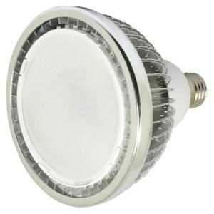 WTC LED PAR30 12W 160度-白光