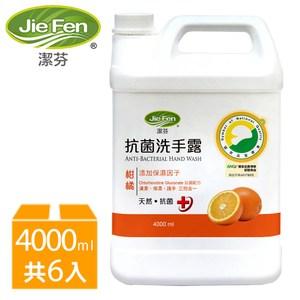 潔芬抗菌洗手露4000ml*6入箱購(柑橘)