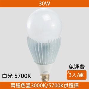 HONEY COMB LED 30W廣角度球泡 白光 3入一組 B-01045