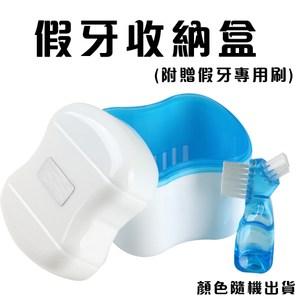 金德恩 假牙專用清潔盒附贈假牙專用刷/收納盒(顏色隨機出貨)顏色隨機