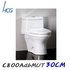 【HCG和成】單體馬桶(C800AdbMUT)-牙色 管距30CM