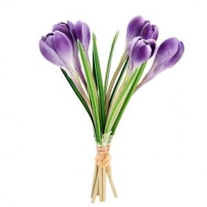 10吋藏紅花7入(束)紫色