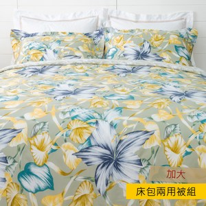 HOLA 芭達雅天絲床包兩用被組 加大