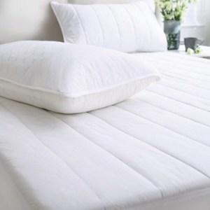 HOLA home 抗菌舖棉枕用保潔墊2入