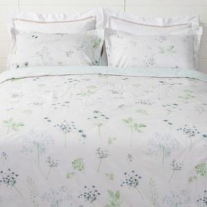HOLA 悠曲純棉床包兩用被組 雙人