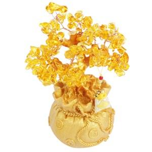 水晶發財樹 金黃