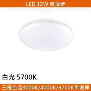 HONEY COMB LED 12W經典吸頂燈 白光 T04815