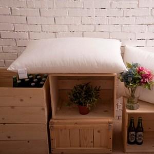 【BBL Premium】超彈力柔適枕(一對)