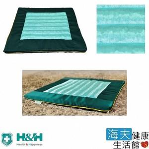 【海夫】南良 H&H 台灣墨綠玉 禪坐墊(40x40x2.5cm)綠