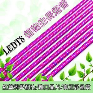【光的魔法師】三入裝LED植物燈 20W 園藝育苗燈(4呎120公分)