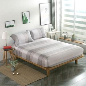 【夢工場】浪漫花絮40支紗萊賽爾天絲三件式兩用被床包組-雙人