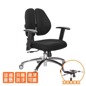 GXG 人體工學 雙背椅 (鋁腳/升降扶手)TW-2991 LU5#訂購備註顏色