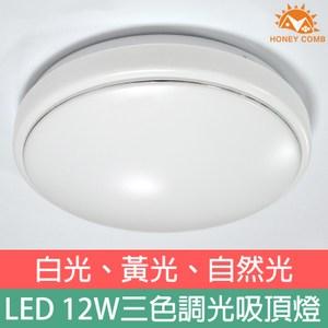 HONEYCOMB LED 12W三段色玄關吸頂燈 TA8879